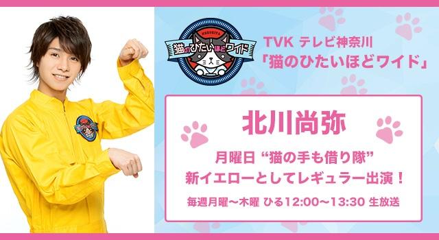 """北川尚弥 TVK「猫のひたいほどワイド」水曜日""""猫の手も借り隊"""""""